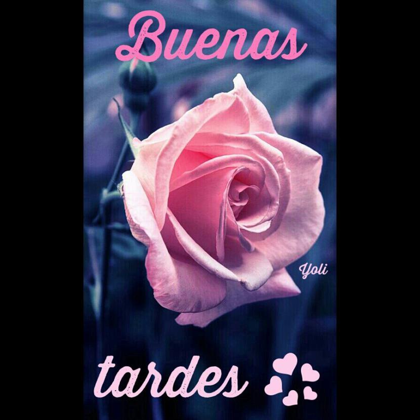 Buenos días,Tardes, Noche AGOSTO 2018 Buenas-tardes-5026