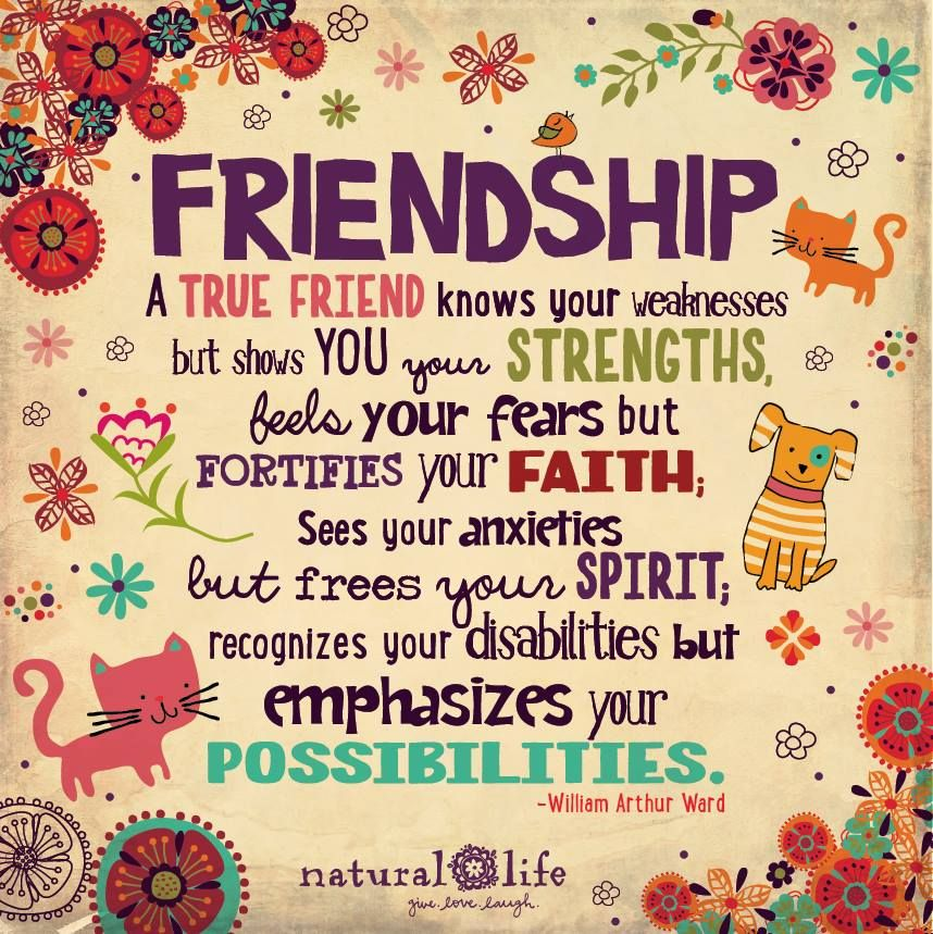 Frases De Amistad Cortas Y Bonitas Pensamientos Y Mensajes