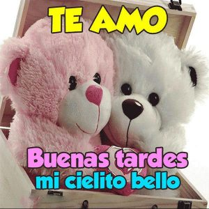Frases De Buenas Tardes Mi Amor Y Para Un Amigo O Amiga