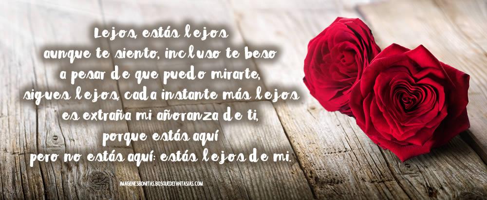 Poesias Romanticas De Amor: Imágenes Con POESÍAS De Amor Bonitas Y Cortas Para Mi