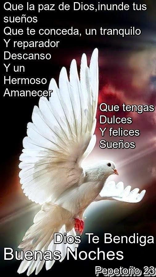 Felices Sueños Mi Amor En Frases Buenas Noches Amigo Hasta Mañana