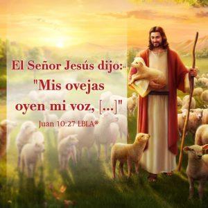 Frases De Jesús De Nazaret Sobre El Amor Y La Vida